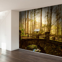 Paul Moore's Abandoned Home in Elkmont, Great Smokey Mountains Mural wall decal