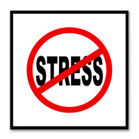 No Stress Sign Art White Print on Canvas Picture Frames Wall Home Décor Mancave