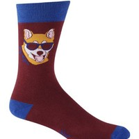 Sock It To Me Men's Crew Socks,Hipster Dog,One Size
