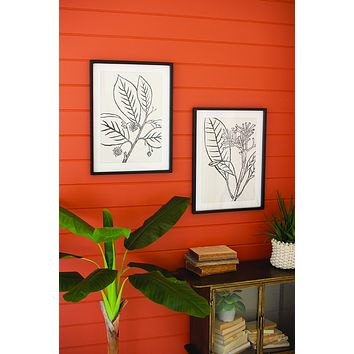 Set Of 2 Framed Black Leaves Prints Under Glass