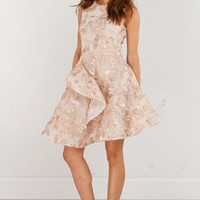 Sleeveless Lace Dress in Champagne and Navy
