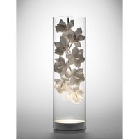 Cymbidium Glass Vessel on SUITE NY