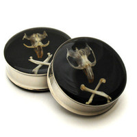 Embedded Rodent Skull and Crossbones Plugs by mysticmetalsorganics