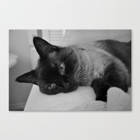 Coco Boo Canvas Print by Solzzz