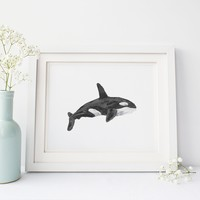 Watercolor Orca Whale Wall Art Print or Canvas