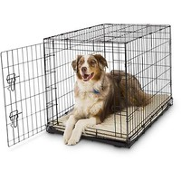Petco Classic 1-Door Dog Crates | Petco
