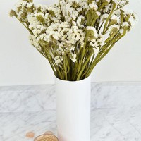 "Preserved Statice Bundle in White - 4 oz Bunch - 13-16"" Tall"