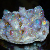 XL 1565 ct. Angel Aura Cactus Quartz Crystal Cluster ~ Angel Aura, Opal Aura, Cactus Quartz