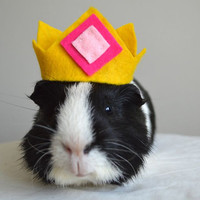 Guinea pig costume crown photo prop for cavy or rabbit
