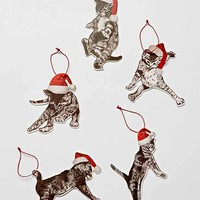 Falling Cats Ornament- Grey One