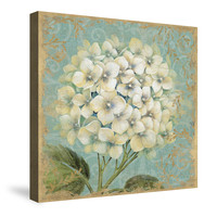 Hydrangea Square I Canvas Wall Art