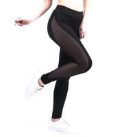Mesh Transparent Leggings