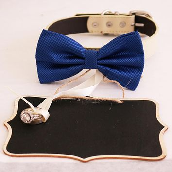 Royal blue  bow tie collar and Small Chalkboards Signs, Proposal, Bridal Sign, Dog Ring Bearer, Marry me, XS to XXL collar