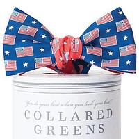 Let Freedom Ring Mixer Bow Tie in Navy/Red by Collared Greens