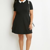 Contrast Collar Fit & Flare Dress