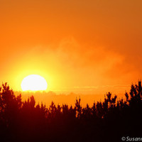 Nature Photography, Sunrise on a Foggy Morning, Matted Print, Summer Solstice, Sun Light, Golden Orange Sky, Brilliant, Home Decor