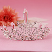Elise Floral Rhinestone & Crystal Royal Crown Tiara