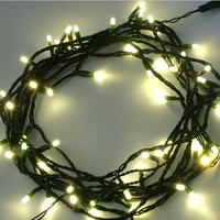 LEDwholesalers Linkable 100-LED 33 Feet Christmas Holiday String Light Green Wire, Warm White, X065WW