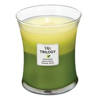 Trilogy Apple Orchard Candle