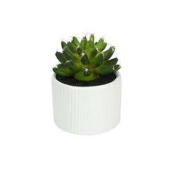 "Walmart: 4.75"" Decorative Artificial Green Echeveria Succulent Plant in a Ceramic White Hobnail Pot"
