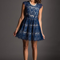 Lyna Navy Lace Fit & Flare Dress
