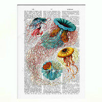 Vintage Dictionary Paper -JELLYFISH Dictionary Art Print