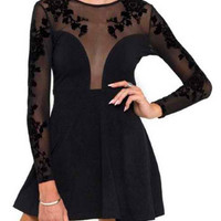 Black Sheer Mesh Long Sleeve Skater Dress
