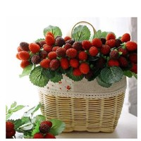 2016 New 9 fruit decoration flower artificial fruit paddle strawberry photo props Artificial plant Home Decor