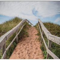Dune 4x5.5 Blank Greeting Card Perfect for all Occasions