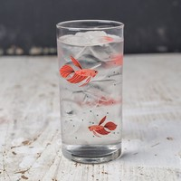 Charley Harper Drinkware: Betta Fish