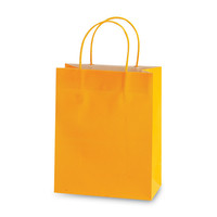 10 1/2W x 13H x 5 1/2G Large citrus Gift Bag/Case of 60