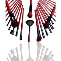 FASH Cosmetics 28 Pcs Professional Goat and Raccoon Hair Makeup Brush Set with Red and Black Rollup Pouch