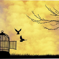 Cage for Bird Animal Canvas Wall Art Print