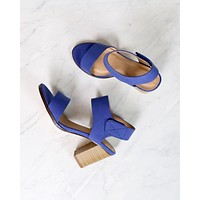 Open Toe Chunky Block Heel Ankle Strap Sandals in More Colors