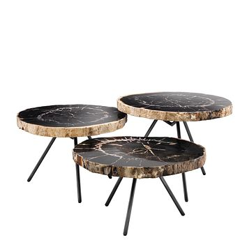 Petrified Wood Coffee Table Set | Eichholtz De Soto