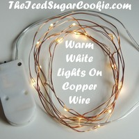 Warm White On Copper Wire LED Battery Operated Lights