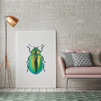 Beetle Poster, Beetle Print, Beetle Illustration, Insect Print, Modern Home Decor, Insect Wall Art, Nursery Decor, Watercolor Print, 8x10