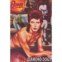 David Bowie Diamond Dogs Album Cover Poster 24x36