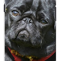 Adorable Black Pug Dog Direct Print (not a sticker) Unique Quality Hard Snap On Case for Samsung Galaxy S3 SIII i9300 (WHITE)