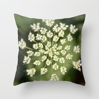 queen lace flowering head. floral garden plant photography. Throw Pillow by NatureMatters