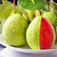 30pcs Guava Seeds Delicious Tropical Fruit seeds Non Transgenic Plants bonsai fruit tree for home garden plant pot food