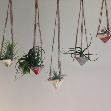 air plant hanging planter / air plant holder / mini cone
