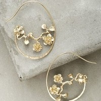 Budding Vine Hoops by Anthropologie in Gold Size: One Size Earrings
