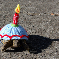Birthday Candle tortoise cozy - made to order, your choice of colors