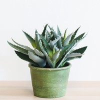 "Artificial Agave Succulent in Pot - 9.5"" Tall"