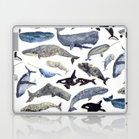 Whale Song Laptop & iPad Skin by Isabelle Sykes