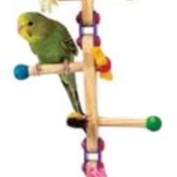 Kaytee Forage-N-Play Ladder, Small Bird Cage