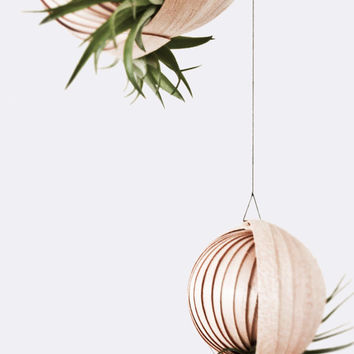 """Hanging Planter for Air Plants """"PFLANZ-PETER"""""""