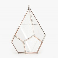 ABJ Glassworks Teardrop Terrarium
