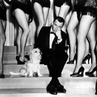 FRANK SINATRA 24X36 POSTER PAL JOEY WITH DOG BY LEGS